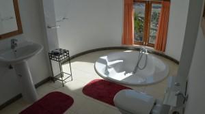 baño con jacuzzi (33)
