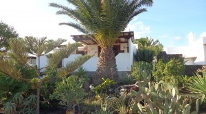 z bungalow total con jardin