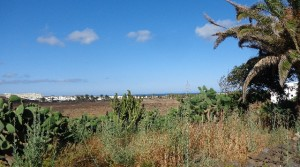 paisaje frente complejo
