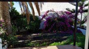 garden terraza